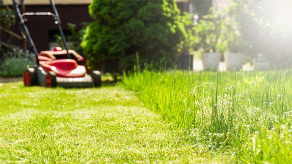 Garten mit Rasenmäher