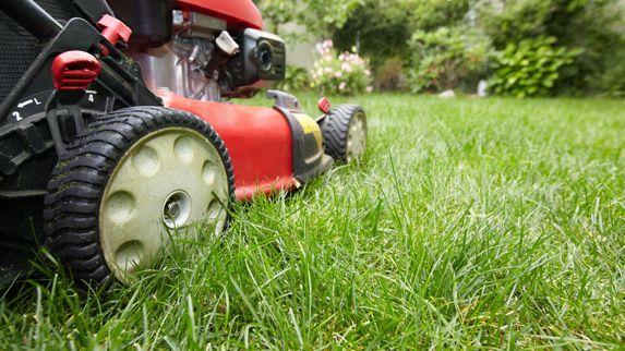 Rasenpflege In Georgsmarienhutte Wir Mahen Ihren Rasen